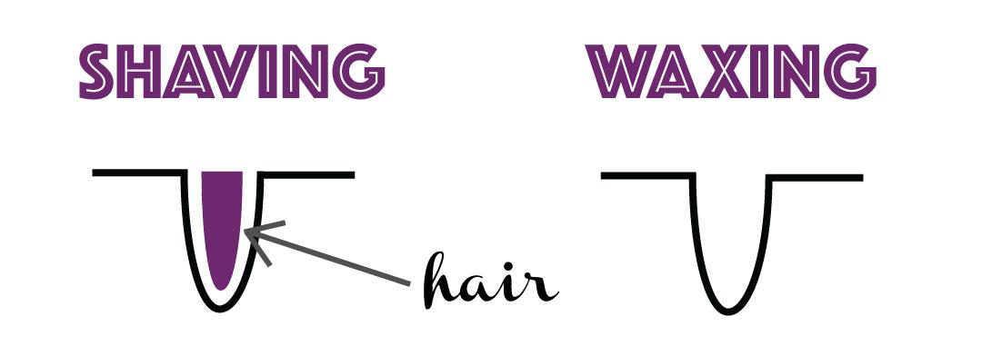 shavingvswaxing2